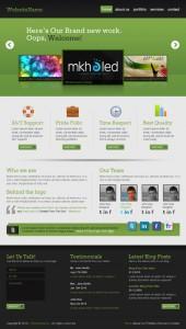 профессиональный веб 2.0 дизайн