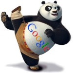 Google Panda — дикий зверь